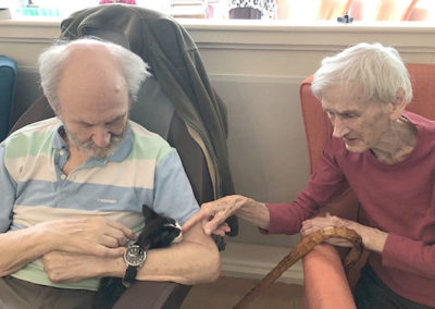 Male residents playing with a black and white kitten at Bromley Park Care Home