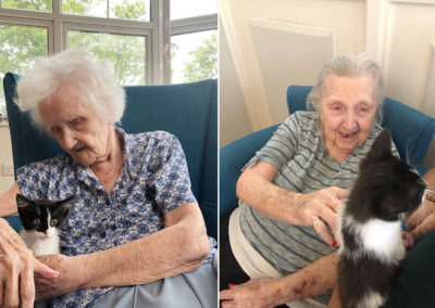 Residents enjoying a kitten at Bromley Park Care Home