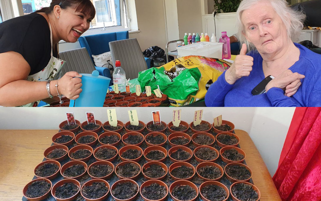 Planting pots at Bromley Park Care Home